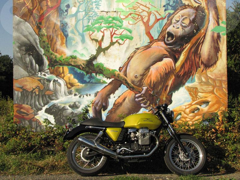 Essai Moto-Guzzi V7 Cafe modèle 2009 par Jean-Michel Lainé