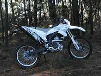 Photo 17 Essai Yamaha WR250R 2008