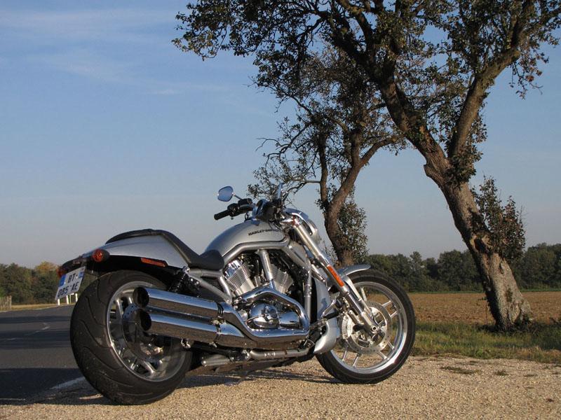 Essai Harley-Davidson V-Rod 1250 2012 par Jean-Michel Lainé