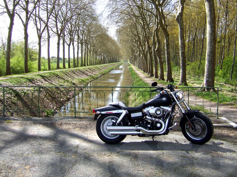 Essai Harley-Davidson Fat Bob 2008 par Jean-Michel Lainé