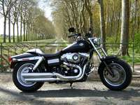 Photo 1 Essai Harley-Davidson Fat Bob 2008