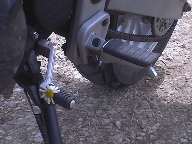 Essai Triumph Tiger 955 2004 par Jean-Michel Lainé